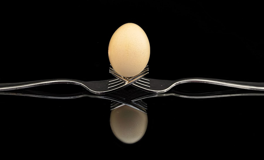 Egg & Fork by Kafoor Sammil - Artistic Objects Other Objects ( fork, egg )