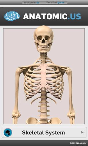 骨格解剖学のゲーム