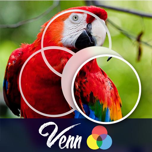 Venn Birds: Circle Jigsaw
