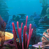 Sea World HD Live Wallpaper