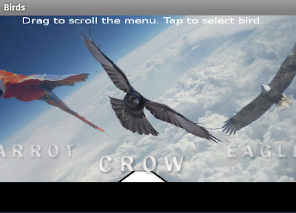 Birds - screenshot thumbnail