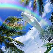Beluga Rainbow