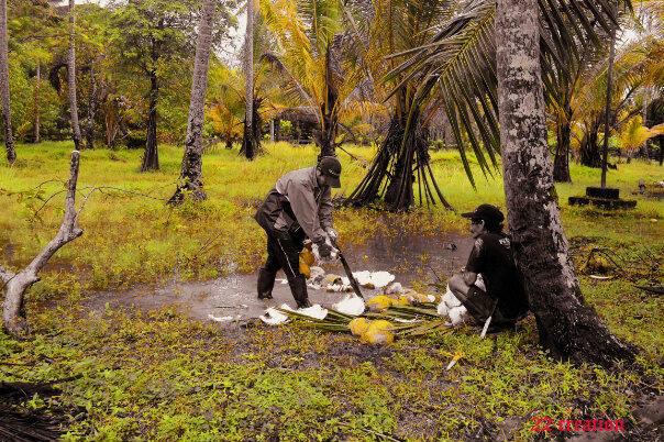 Coconut farmer... by Dwi Ratna Miranti - People Professional People