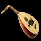 リュートプレイ icon