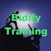 Struggling In Bidify Business