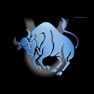 Horoscope 2014 Taurus