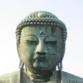 Buddhas Reden ● FREE