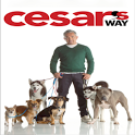 Cesar's Way Magazine icon