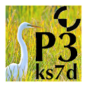 P3 Micro Manual icon