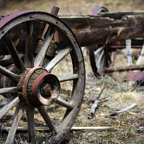 Forgotten Wagon by Derrick Leiting - Artistic Objects Antiques ( old, wheel, art, wagon, colorado, 50mm, photography, mountains, color, nikon, decay, abandoned, covered )
