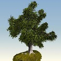 Tree 3D live wallpaper logo