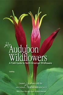 Audubon Wildflowers - screenshot thumbnail