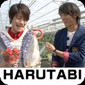 """HARUTABI""  (vol.1) logo"
