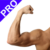 Arm Workout Pro