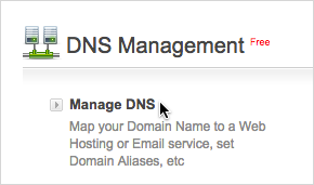 Manage DNS link