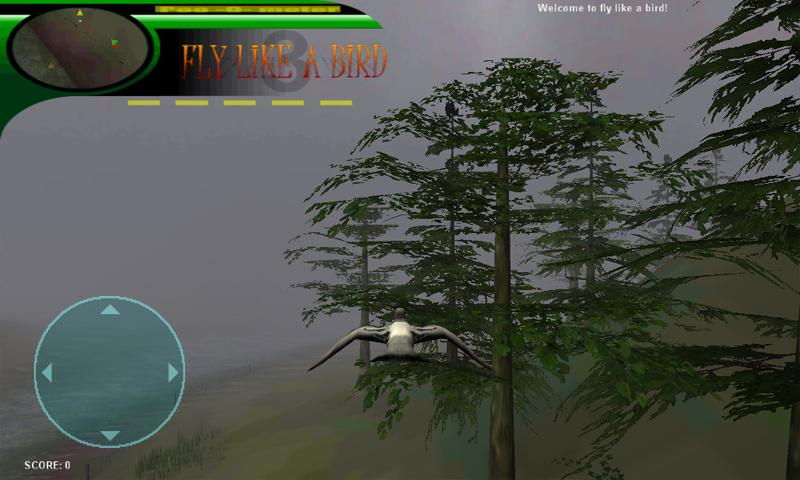 Play Fly Like A Bird 3 Gamevial - boajuload