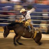 Rodeo News App