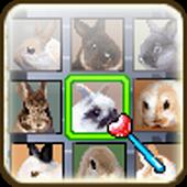 Linking Pet