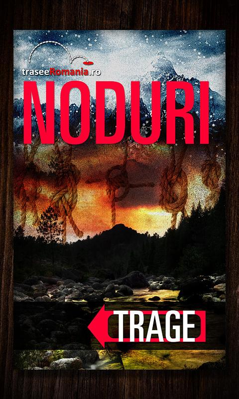 NODURI- screenshot