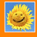 Позитив icon