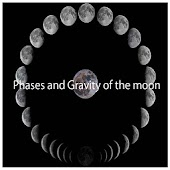 Gravity and Phases