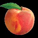 Peach State FCU
