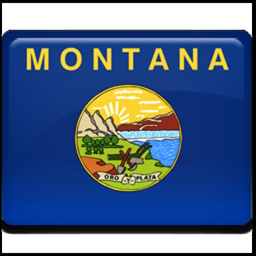 旅游のMontana Traffic Cameras LOGO-記事Game