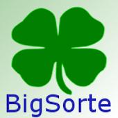 BigSorte