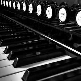 Harmonium by Sondre Gunleiksrud - Artistic Objects Musical Instruments ( music, canon, black background, blackandwhite, hdr, black and white, organ, instrument, norway,  )