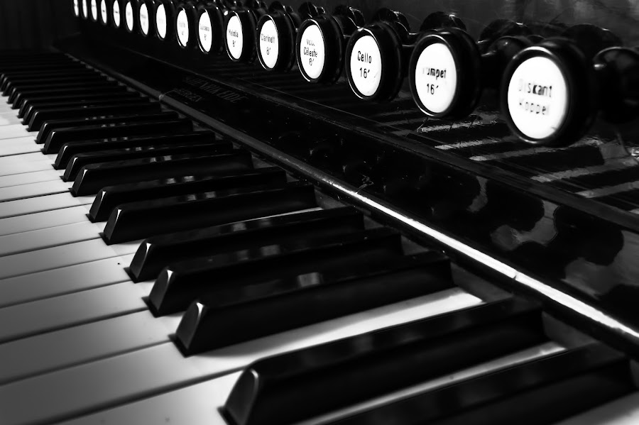 Harmonium by Sondre Gunleiksrud - Artistic Objects Musical Instruments ( music, canon, black background, blackandwhite, hdr, black and white, organ, instrument, norway,  )