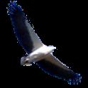 GlideMate icon