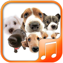 Dog sounds & Ringtones icon