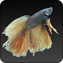 Fish World Free icon