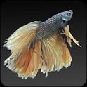 Fish World Free icon