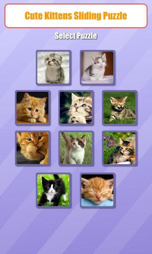 Cute Kitten Sliding Puzzle