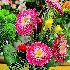 Arangments by Ana France - Flowers Flower Arangements