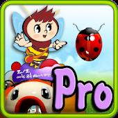Pedi Maze Pro