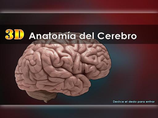 Anatomía del Cerebro 3D