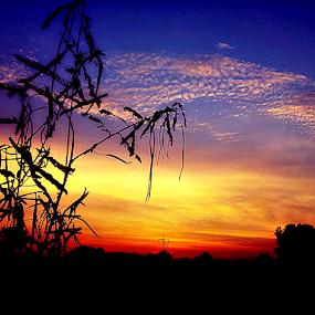 by Omrin Kamarudin - Landscapes Sunsets & Sunrises