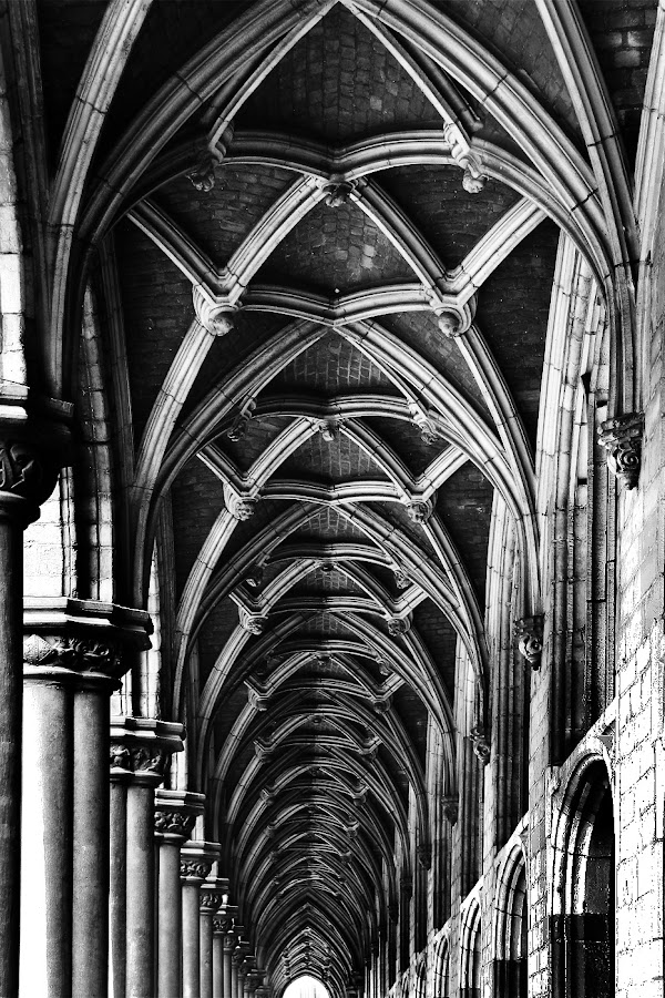 Arches by Andy Just Andy - Buildings & Architecture Public & Historical ( old, black and white, arches, outside )