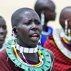 Maasai Dancers by Tony Murtagh - People Portraits of Women ( dancers, serengeti, tanzania, maasai )