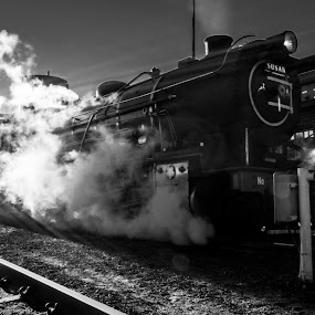 choo choo by Farrah-Diba Sing - Transportation Trains ( black and white, johannesburg, steam train, train, trains,  )