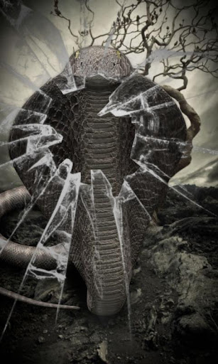 Cobra lwp Free