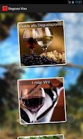 Screenshot of Degusta Vino