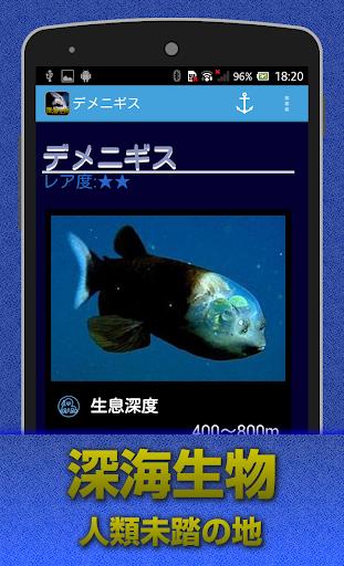 深海生物 闇に潜む謎の生物達・・・