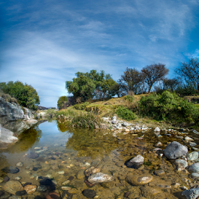river ad field by Cristobal Garciaferro Rubio - Nature Up Close Rock & Stone ( water, hyperfocal, reflections, bush, trees, rocks, river )