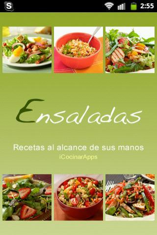 iCocinar Ensaladas - screenshot