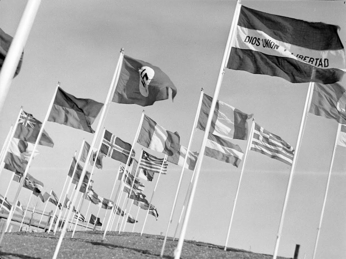 Field Of Flags Of Various States And Nations