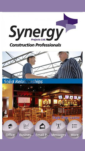Synergy Projects Ltd.