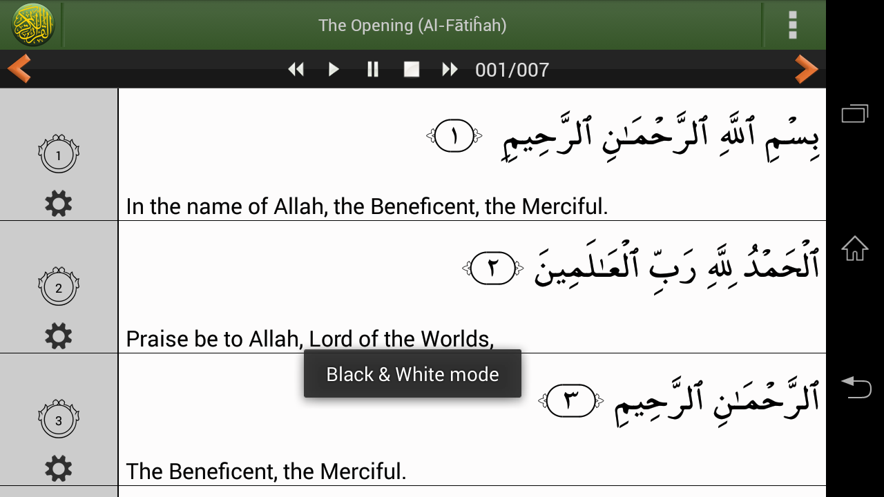 Quran PRO (Pickthall) - screenshot